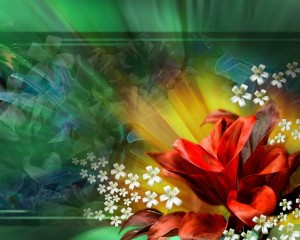 31150-color-abstract-flower-wallpaper-design-ideas-wall-murals-gallery_1024x600
