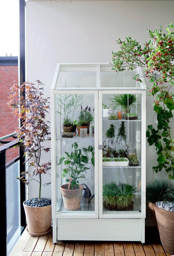balkon-aranzacja-szklarnia